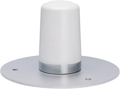 802.11 b/g/n Wireless Adaptor/Antenna