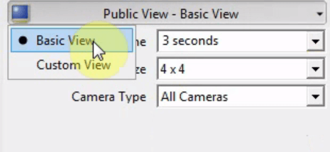 The custom view window when setting up a Public View Monitor in Administrator Console